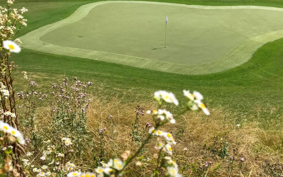 Verlängert: Golf Summer Foto Challenge